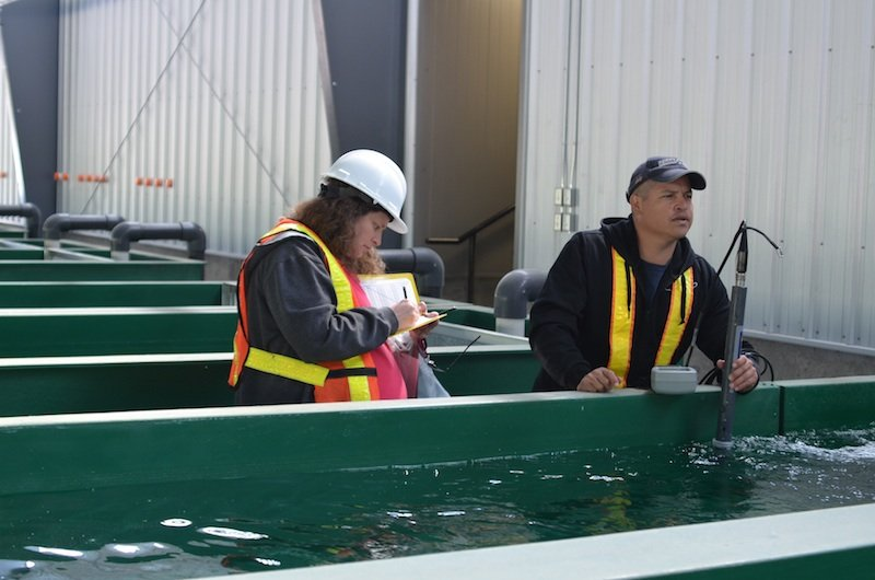 Shayla Lawrence and technician, Herb Alex, testing water at the state-of-the-art Okanagan Nation Allliance Hatchery.